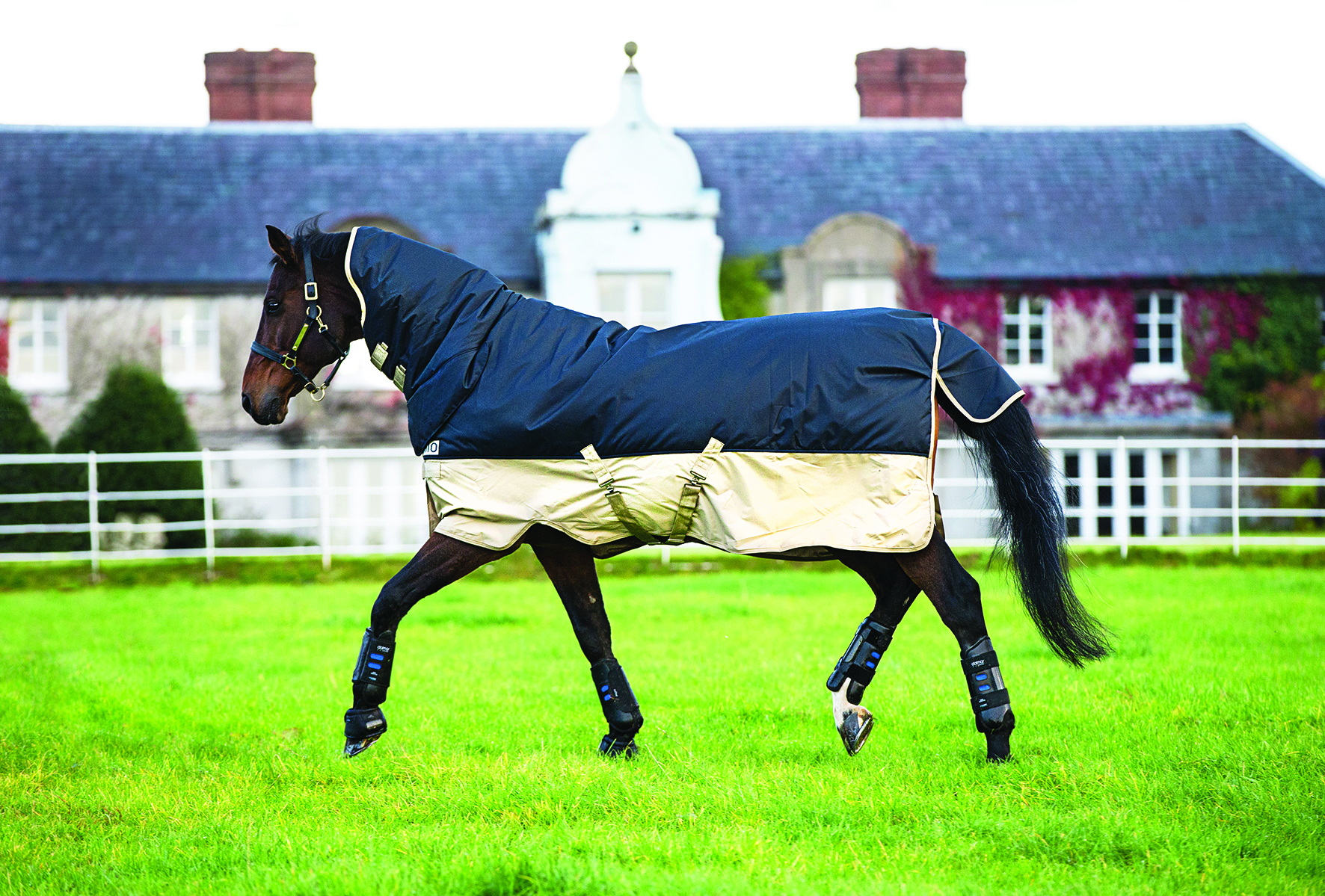 Horseware Mio All-In-One Turnout Rug 350g Navy Tan